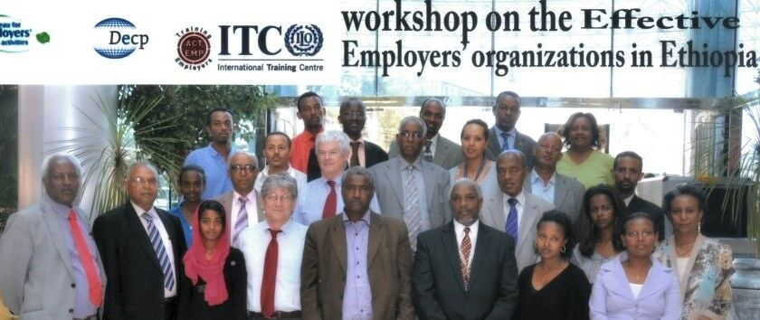 Employers' organisations revisited
