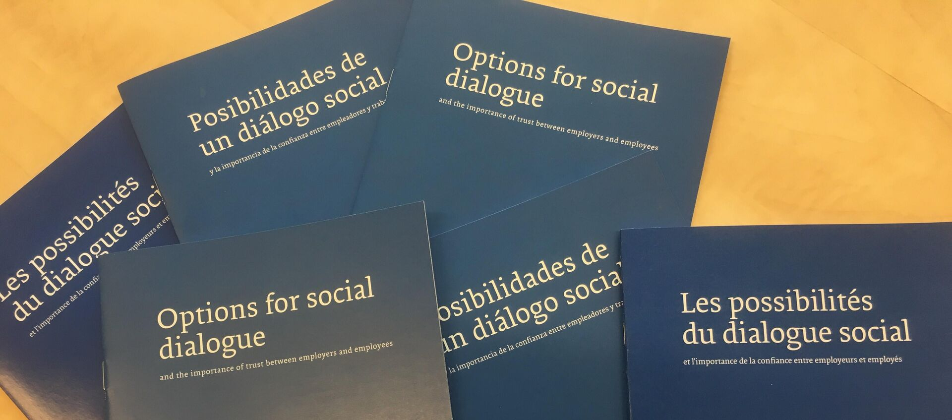Options for Social Dialogue